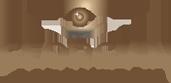 Barrie Optometrists